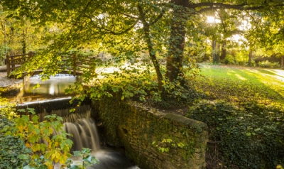 Things to Do in Dublin: National Botanical Gardens